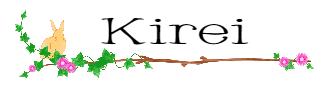 キレイ|美容レポ・アラフォー・アンチエイジング